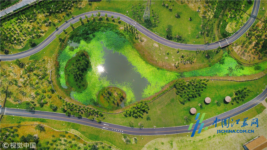 南通及周边居民将新增一个游玩的好去处。记者从港闸区委宣传部获悉,南通森林野生动物园拟于9月中旬对外试运营。   南通森林野生动物园位于港闸区北部,园区总占地面积3000余亩,计划总投资32亿元。项目分两期开发,一期为森林野生动物园,占地约2500亩;二期为梦幻国际马戏文化城和野生动物主题酒店(待建)。南通森林野生动物园拥有自驾观赏、步行观赏以及全国首创的船行观赏动物模式,计划展出的野生动物有300余种,近2万头(只),将成为长三角地区规模最大的野生动物园。   截至目前,南通森林野生动物园已经完成基础